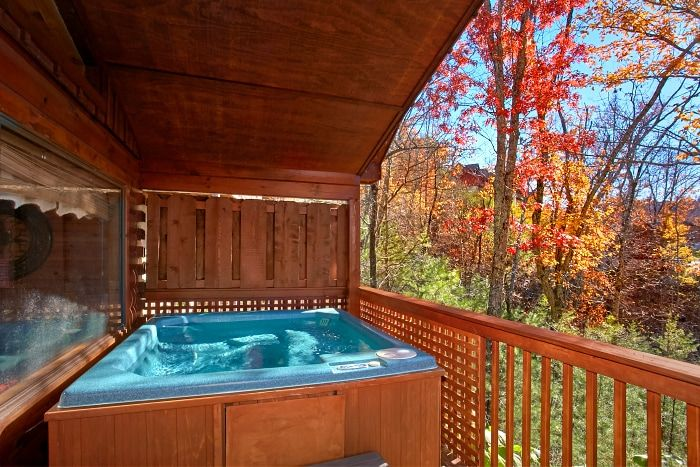 Delicieux ... Luxury 1 Bedroom Cabin With Private Hot Tub   A New Beginning ...
