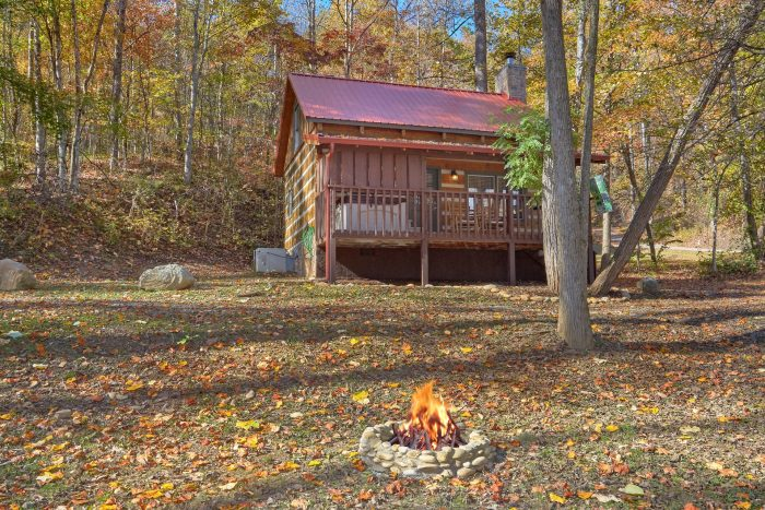 Cabin In The Woods 1 Bedroom Cabin Fire Pit - Bare Kissin And Huggin