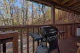 Gas Grill 1 Bedroom Cabin Sleeps 4