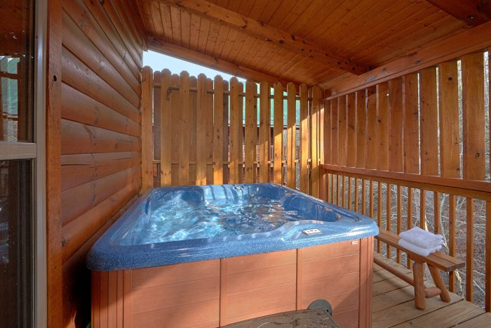 Pigeon Forge Cabin with a Hot Tub - Bear Creek Lodge