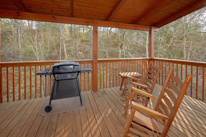 Smoky Mountain Cabin with a Grill - Bear Creek Lodge