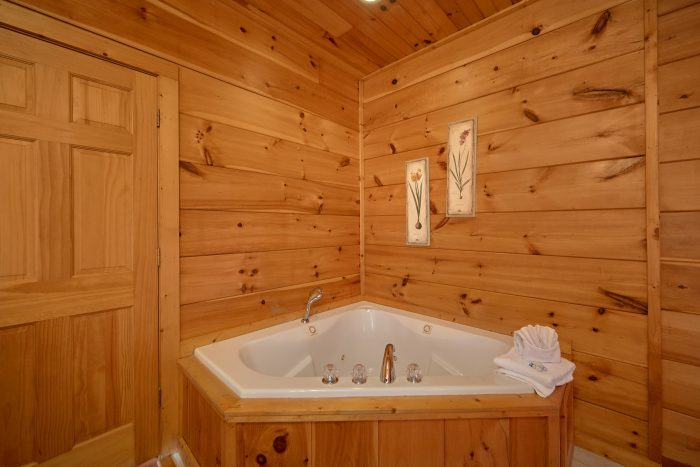2 Bedroom Cabin with King Bed and Jacuzzi - Bears and Beyond
