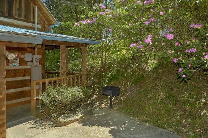 Pigeon Forge Cabin with a Charcoal Grill - Cuddle Creek Cabin