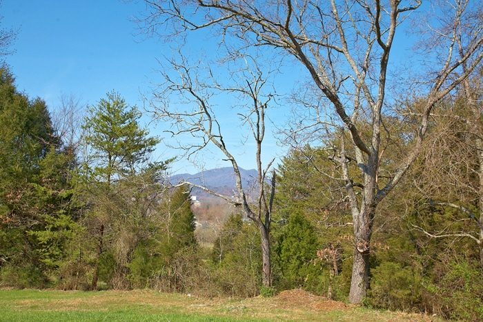 1 Bedroom Cabin in Pigeon Forge near the Parkway - Hideaway Heart
