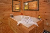 Cabin with Jacuzzi in Master Bedroom