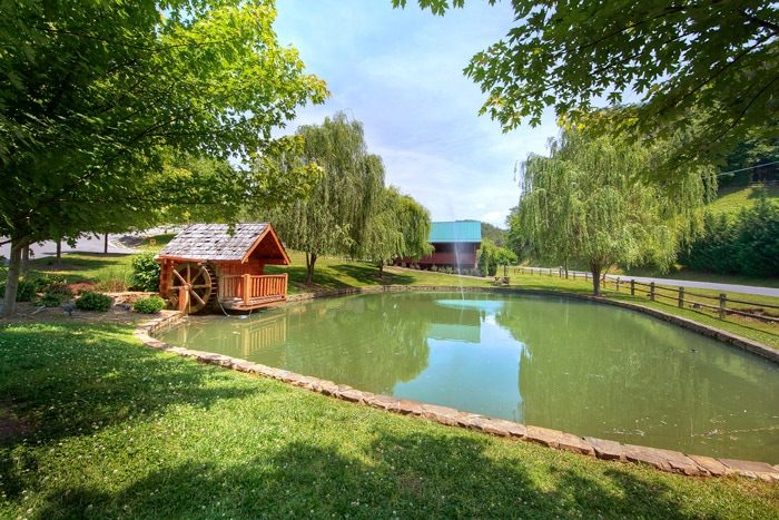 Cabin with pond and waterwheel - Poolside Cabin