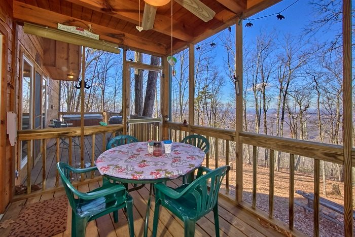 Private Honeymoon Cabin with screened in porch - Sky High Hobby Cabin