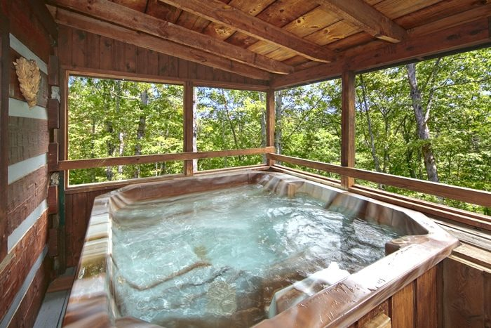 ... 1 Bedroom Smoky Mountain Cabin With A Hot Tub   Top Of The Mountain ...