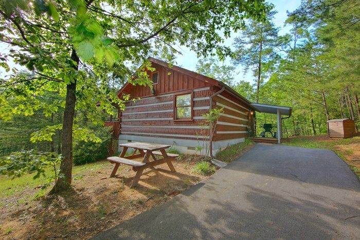Wears Valley Cabin with a Grill & Picnic Table - Top of the Mountain